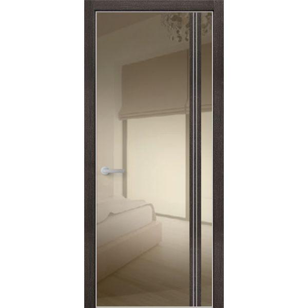 Двери VIP с окрашенным стеклом